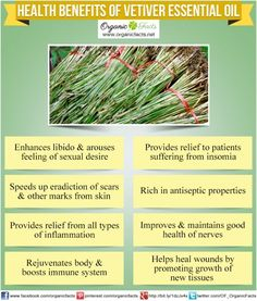 Health benefits of vetiver essential oil can be attributed to its properties as an anti-inflammatory, antiseptic, aphrodisiac, cicatrisant, nervine, sedative, tonic