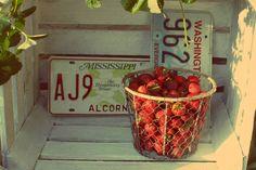 #magdamaciek2014 #wedding  #decoration #strawberry #strawberries #patriotic