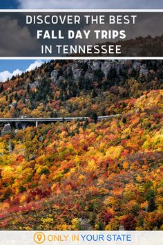 Discover some of the best and most beautiful fall day trips in Tennessee. Explore nature at these outdoor destinations including waterfalls, state parks, and Great Smoky Mountain National Park! You'll find hiking trails, kayaking, horseback riding, camping, foliage, historic drives and plenty of photo opportunities. All make for great local vacation spots! Scenic Photography, Aerial Photography, Night Photography, Photography Tips, Landscape Photography, Places Around The World, Oh The Places You'll Go, Places To Visit, Carolina Beach