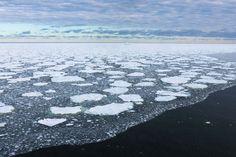 Las altísimas temperaturas del océano es uno de los mayores desafíos para nuestra generación - http://www.renovablesverdes.com/las-altisimas-temperaturas-del-oceano-uno-los-mayores-desafios-nuestra-generacion/