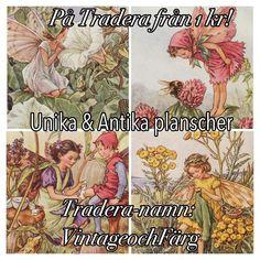 #tradera #butterflyvintage #vintage #planscher