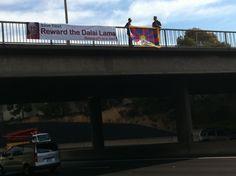 Reward Dalai Lama banner over highway in Melbourne