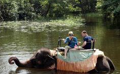 Elephant Ride, Habarana, Sri Lanka (www.secretlanka.com)