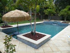Pool Deck Limestone Google Search Pool Pinterest