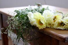james's daughter flowers | gardenista