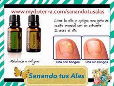 Image result for medicine cabinet makeover doterra pdf | essential ...
