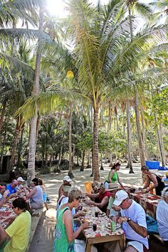 Windstar Cruises guests having lunch on the beach in Costa Rica http://www.windstarcruises.com