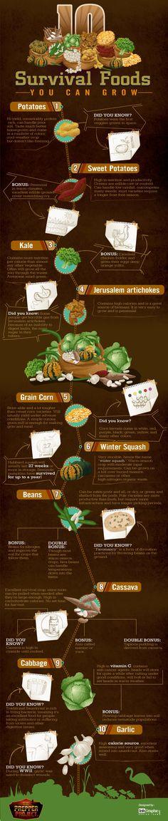 Survival Food Graphic