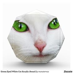 Green Eyed White Cat Acrylic Award #GreenEyes #Cat #Pet  #Animal #Acrylic #Award
