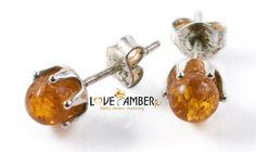 Polished Honey Baltic Amber Silver Clasp Stud Earrings