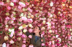 """Always bring flowers, Rebecca Louise Law """