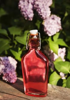 Harvest Pictures, Cordial Recipe, Homemade Sweets, Flower Food, Piece Of Cakes, Yummy Drinks, Hot Sauce Bottles, Summer Recipes, Preserves