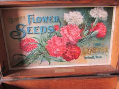 Antique D M Ferry Advertising Flower Seed Display Box