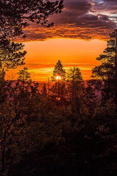 Orange sunset by Svenn-Inge Sellesbakk Photo by Svenn-IngeSellesbakk on Fivehundredpx