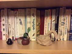 Een boekenkast met vogelboeken en beeldjes van vogels, gekocht en gemaakt.