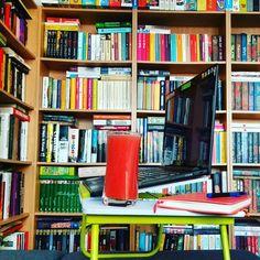 Praca z łóżka. Laptop i książki w domowym biurze.