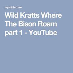 Wild Kratts Where The Bison Roam part 1 - YouTube