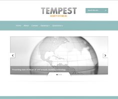 Tempest Security Systems Website Security Systems, State Art, Technology, Website, Tecnologia, Tech, Engineering