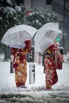 Coming of Age day under the snow in Tokyo, Japan Japanese Kimono, Japanese Art, Japanese Style, Winter In Japan, Snow Japan, Samurai, Coming Of Age Day, Japon Tokyo, All About Japan