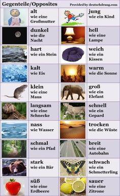 German vocabulary - Opposites and analogies Study German, Learn German, Learn French, German Grammar, German Words, German Resources, Deutsch Language, Germany Language, German Language Learning