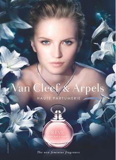 Reve de Van Cleef & Arpels - Buscar con Google Reve de Van Cleef & Arpels es una fragancia de la familia olfativa Floral Frutal para Mujeres. Reve se lanzó en 2013. Las Notas de Salida son pera y neroli; las Notas de Corazón son osmanto (olivo oloroso), azucena y peonía; las Notas de Fondo son sándalo y ámbar.