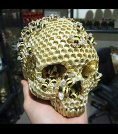 Bees in skull