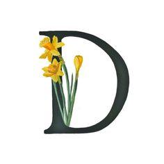 D est pour les narcisses, imprimé Floral Alphabet 5 x 7 ou 8 x 10