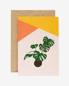 Monstera Card Warm Colors, Colours, Hand Illustration, Gift Tags, Flora, Recycling, Greeting Cards, Paper, Prints