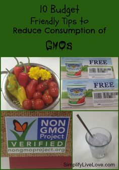 10 Budget Friendly Tips to Reduce Consumption of GMOs - it's hard to reduce GMOs on a budget. Here are 10 tips to kick GMOs to the curb.