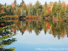 Chub River Mill Pond Reflections Autumn by AdirondackMtnImages, $30.00