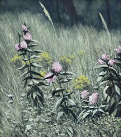 Silkweed, original oil on canvas by Lewis Bryden | R. Michelson Galleries