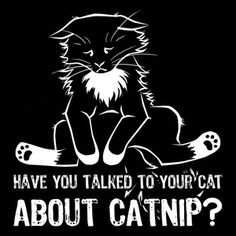 If you don't talk to your cat about catnip who will Crazy Cat Lady, Crazy Cats, Talking To You, Graphic Tees, Creatures, Kitty, Cat Stuff, Exhibit, Behavior