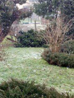 Winter 31.03.2015???
