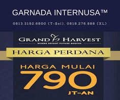 Grand Harvest Kebraon, Grand Harvest Surabaya Barat, Grand Harvest Balas Klumprik Surabaya, Grand Harvest, Grand Harvest Surabaya, Grand Harvest Surabaya City East Java, Grand Harvest Perumahan, Grand Harvest By Provest, Grand Harvest Event, Jual Grand Harvest, Grand Harvest Kebraon Surabaya, Perumahan Grand Harvest Kebraon, Lokasi Grand Harvest, Grand Harvest Provest, Grand Harvest Provest Surabaya, Grand Harvest Property, Rumah Grant Harvest, Grand Harvest Wiyung