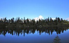 Lago Palmieri (Croda da Lago) sullo sfondo il Monte Antelao