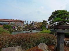 bonsai garden | Flickr: Intercambio de fotos