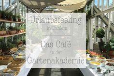 Urlaubsfeeling in Dahlem - Das Café in der Gartenakademie