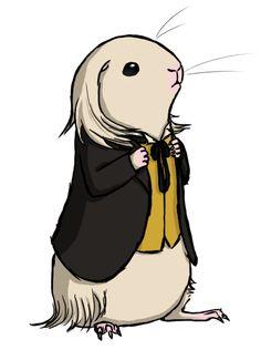 soyrwoo:  Doctor Wheek, One of eleven He's a white sheltie