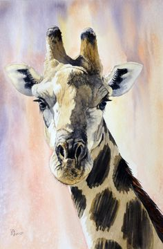Pam Quinlan - Giraffe Portrait, Watercolor