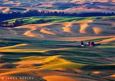 Morning light rolls across the Palouse, Washington