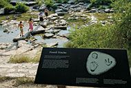 Dinosaur Valley State Park...been there, done that, would do it again!
