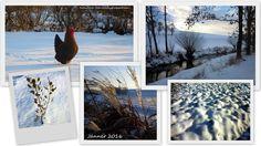 NaturNah: Jahresrückblick 2016 Snow, Inspiration, Outdoor, Thoughts, Nature, Life, Garten, Outdoors, Biblical Inspiration