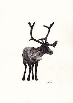 Beautiful pencil drawing by Jamie Mills.