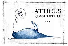Atticus Last Tweet