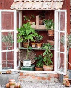 Build a simple greenhouse Best Picture For Greenhouse bedroom For Your Taste You are looking for something, and it is going to tell you exactly what you are looking for, and you didn't find that pictu Simple Greenhouse, Mini Greenhouse, Greenhouse Gardening, Greenhouse Growing, Greenhouse Ideas, Garden Cottage, Home And Garden, Cold Frame, Garden Structures