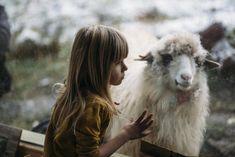 Mă simt onorată să fiu mamă de veșnicii (săptămâna 2) – Andreea Stanciu Goats, Youtube, Animals, Animales, Animaux, Animal, Animais, Youtubers, Youtube Movies