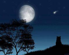 Origine du mot Nuit