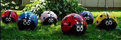 Bowling Ball Bugs