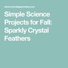 Simple Science Projects for Fall: Sparkly Crystal Feathers
