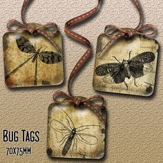 Grungy Bug Tags for Journaling Scrapbooking Gift by Bottlecap4u, $3.20
